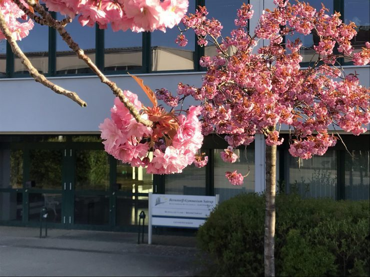 Eingang im Mai