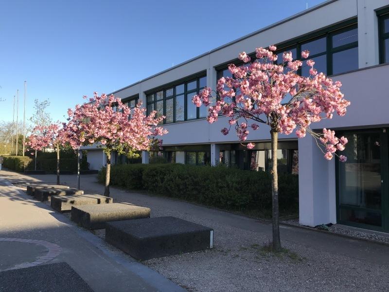 Gebaeude-Altbau